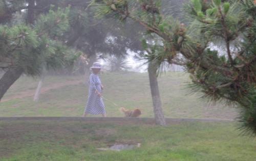 森林中的老妇人